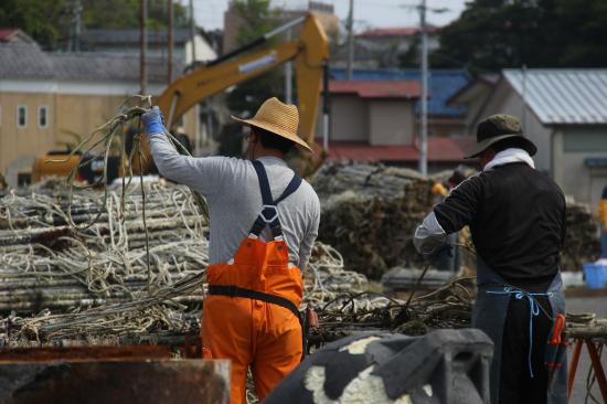 海苔の養殖に使う道具を清掃