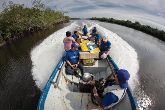 【ジカ熱対策支援】中南米エルサルバドルに防虫剤配合の蚊帳8,870張を寄贈