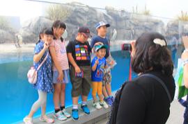 【福島:心のケア】家族で安らぐ普通の安心を求めて