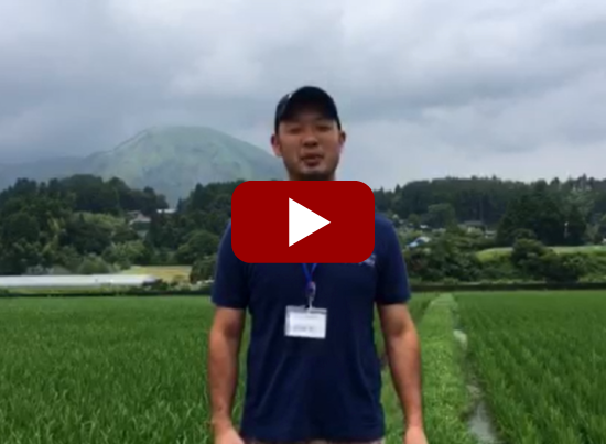 【熊本地震 復興支援】南阿蘇 雨上がりの除草支援