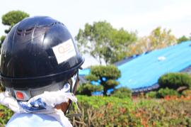 【熊本地震から半年】2016年9月の支援活動報告 屋根補修とブルーシート敷設支援
