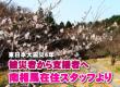 【東日本大震災6年】被災者から支援者へ 南相馬在住OBJスタッフより