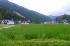 【九州北部豪雨】OBJスタッフからの現地写真